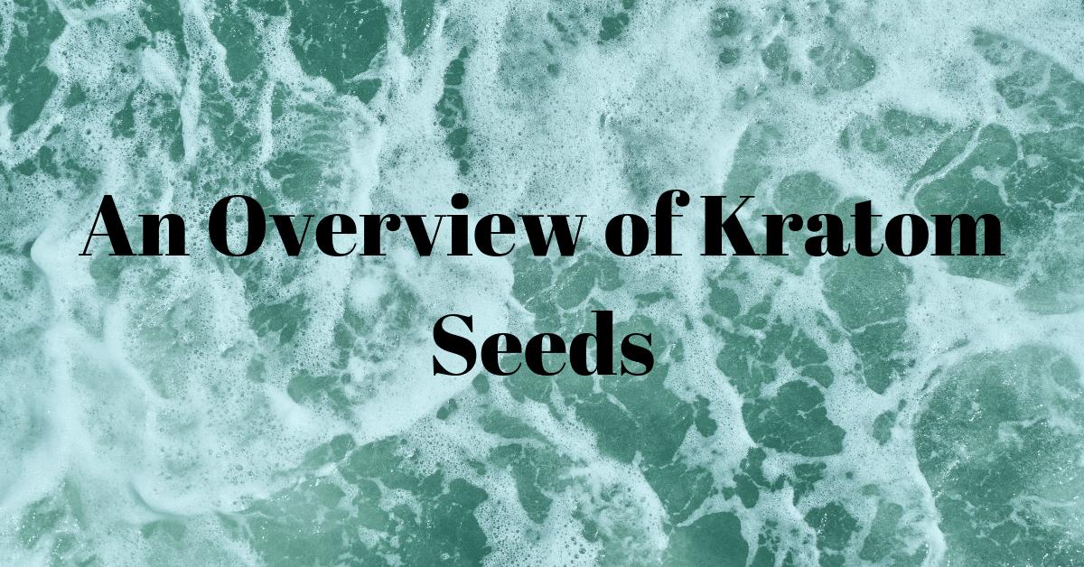 An Overview of Kratom Seeds
