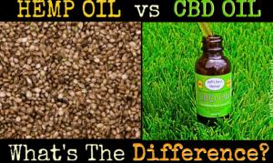 hemp-oil-cbd-oil