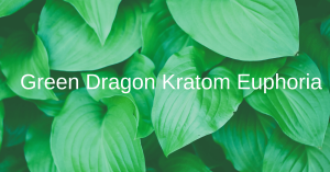 Green Dragon Kratom Euphoria