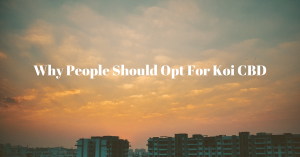 KoiCBD Vendor Review