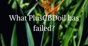 PlusCBDoil