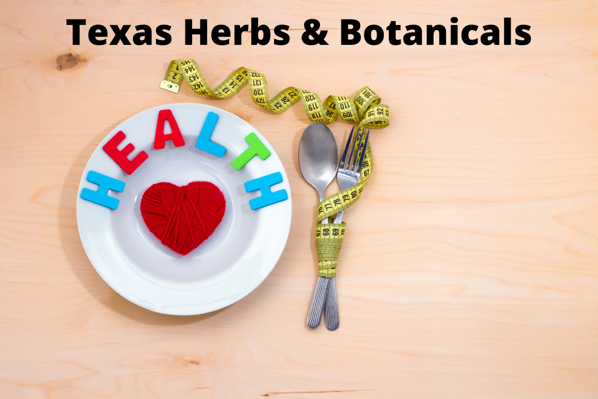 Texas Herbs & Botanicals