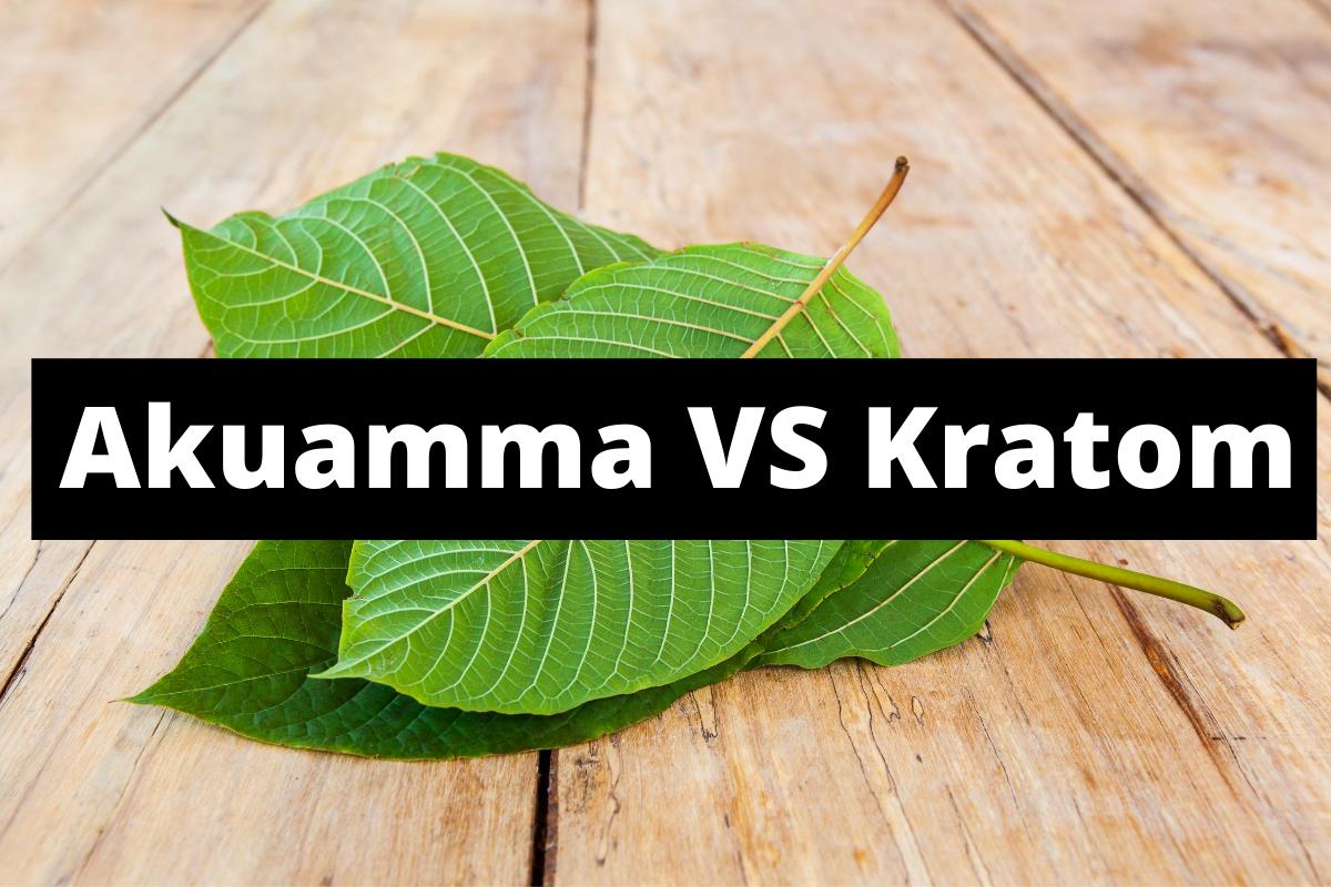 Akuamma VS Kratom