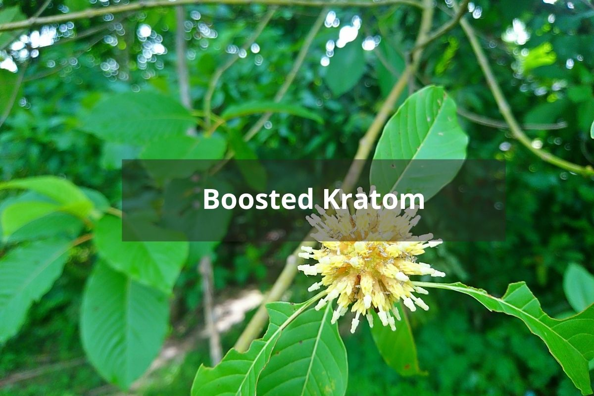 Boosted Kratom